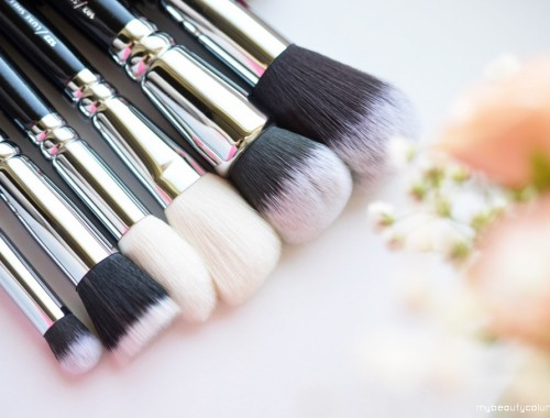 Zoeva Classic Face Brush Set